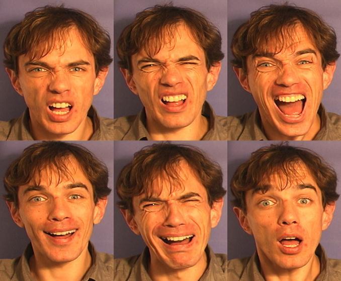 Эмоции и чувства (мимика) - Книги по невербалике и